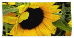 Bath Towel featuring the photograph Sunflower by James C Thomas