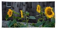 Sunflower Quartet Hand Towel