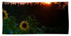Hand Towel featuring the photograph Sunflower Sunset by Cheryl Baxter