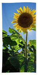 Sunflower With Sun Hand Towel