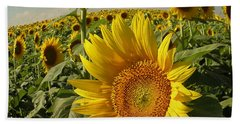 Kansas Sunflowers Bath Towel by Chris Berry