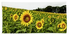 Sunflowers On A Hill Hand Towel