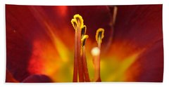 Sunlit Lily Hand Towel by David Porteus