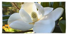 Sunlit Southern Magnolia Hand Towel