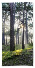 Sunlit Trees Hand Towel by Spikey Mouse Photography