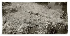 Bath Towel featuring the photograph Sunny Gator Sepia  by Joseph Baril