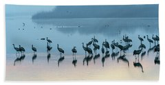 Sunrise Over The Hula Valley Israel 5 Hand Towel
