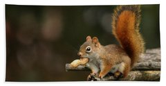 Bath Towel featuring the photograph Surprised Red Squirrel With Nut Portrait by Debbie Oppermann