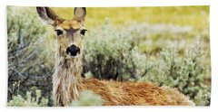 Bath Towel featuring the photograph Surround Sound by Belinda Greb