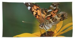 Susan Painted Lady Hand Towel by Reid Callaway