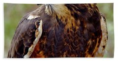 Swainson's Hawk Hand Towel by Ed  Riche