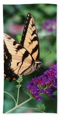 Swallowtail Butterfly 1 Hand Towel