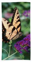 Swallowtail Butterfly 1 Bath Towel