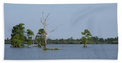 Bath Towel featuring the photograph Swamp Cypress Trees by Joseph Baril