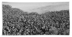 Bath Towel featuring the photograph Swamp Hyacinths Water Lillies Black And White by Joseph Baril