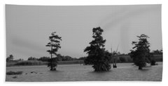 Hand Towel featuring the photograph Swamp Tall Cypress Trees Black And White by Joseph Baril