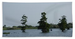 Bath Towel featuring the photograph Swamp Tall Cypress Trees  by Joseph Baril