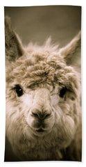 Sweet Alpaca Hand Towel by Shane Holsclaw