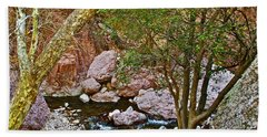 Sycamore And Cottonwood In Whitewater Catwalk National Recreation Trail Near Glenwood-new Mexico  Bath Towel by Ruth Hager