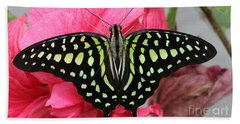 Bath Towel featuring the photograph Tailed Jay Butterfly #6 by Judy Whitton