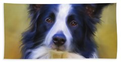 Beautiful Border Collie Portrait Hand Towel