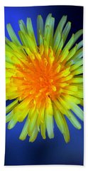 Blue Hand Towel featuring the photograph Taraxacum by Aaron Berg