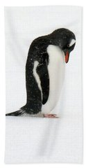 Telephone Bay- Antarctica Hand Towel