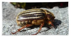 Ten-lined June Beetle Profile Bath Towel