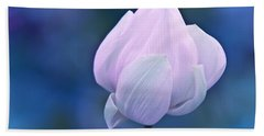 Tender Morning With Lotus Hand Towel