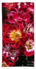 The Beauty Of Carpet Roses  Hand Towel