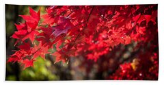 The Color Of Fall Hand Towel by Patrice Zinck