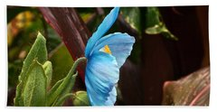 The Colors Of The Himalayan Blue Poppy Bath Towel