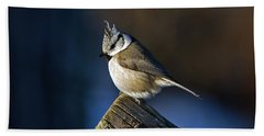 The Crested Tit In The Sun Hand Towel