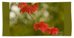 The Essence Of Autumn Hand Towel by Nick  Boren