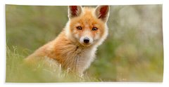 The Face Of Innocence _ Red Fox Kit Hand Towel