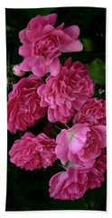 Hand Towel featuring the photograph The Fence Roses by Louise Kumpf