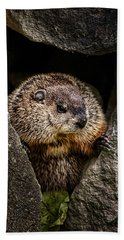 The Groundhog Hand Towel by Bob Orsillo