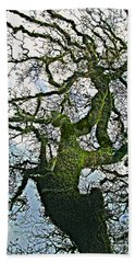 The Old Mossy Oak Tree Against Cloudy Sky Bath Towel