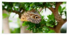 The Owl Butterfly Hand Towel