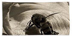 The Pollinator Bath Towel by Chris Berry