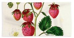 The Roseberry Strawberry Hand Towel by Edwin Dalton Smith