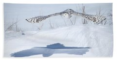 Bath Towel featuring the photograph The Silent Hunter by Heather King