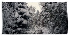 Bath Towel featuring the photograph The Way In Snow by Felicia Tica