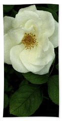 Bath Towel featuring the photograph This Rose For You by James C Thomas