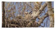 Three Baby Owls  Hand Towel