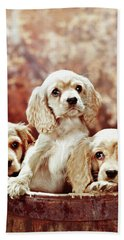 Three Blond Cocker Spaniel Puppies Bath Towel