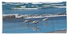 Three Seagulls At Ocean Shore Art Prints Bath Towel by Valerie Garner