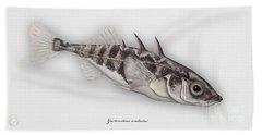 Three-spined Stickleback Gasterosteus Aculeatus - Stichling - L'epinoche - Espinoso - Kolmipiikki Bath Towel