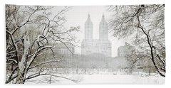 Through Winter Trees - Central Park - New York City Hand Towel