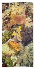 Tidal Pool Color Hand Towel